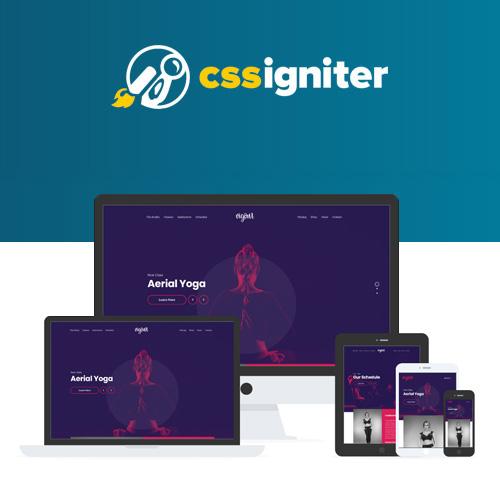 CSS Igniter Vigour WordPress Theme
