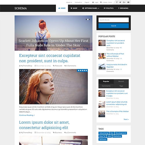 MyThemeShop Schema WordPress Theme
