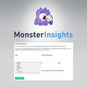 MonsterInsights – Dimensions Addon