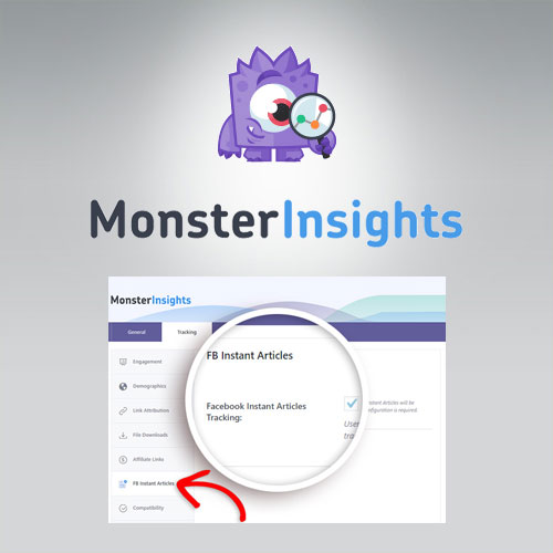 MonsterInsights – Facebook Instant Articles Addon