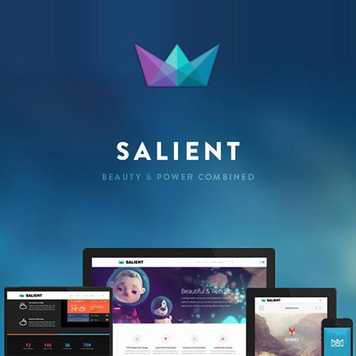 Salient – Responsive Multi-Purpose Theme
