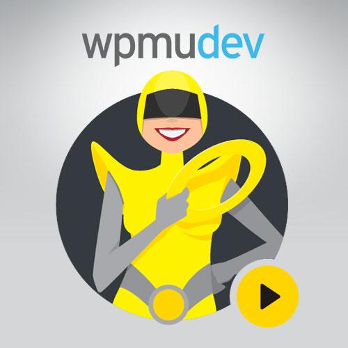 WPMU DEV Hummingbird Pro