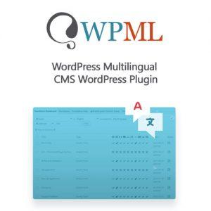 WordPress Multilingual CMS WordPress Plugin